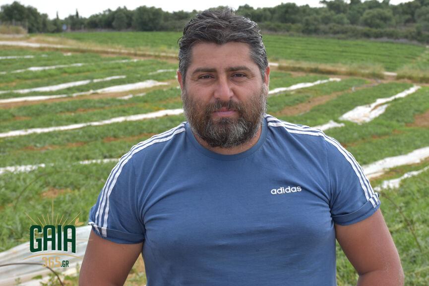 Georgiopoulos V