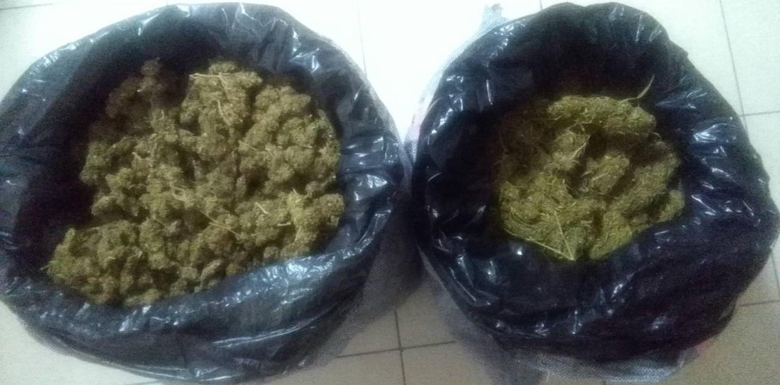 Τμήμα Δίωξης Ναρκωτικών Πύργου: Εντόπισε ακόμη 13 κιλά κάνναβης στο πλαίσιο ερευνών για την υπόθεση σύλληψης έξι διακινητών μεγάλων ποσοτήτων ναρκωτικών