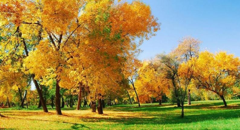 Ηλεία: Με ήλιο την Τετάρτη ο καιρός, επιδείνωση την Πέμπτη