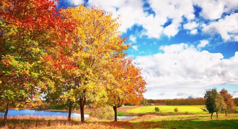 Ηλεία: Ξεκίνημα με ζέστη και καλό καιρό - Αλλαγή από την Πέμπτη