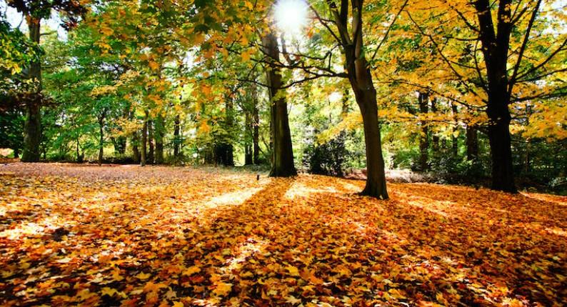 Ηλεία: Πρόσκαιρη βελτίωση του καιρού