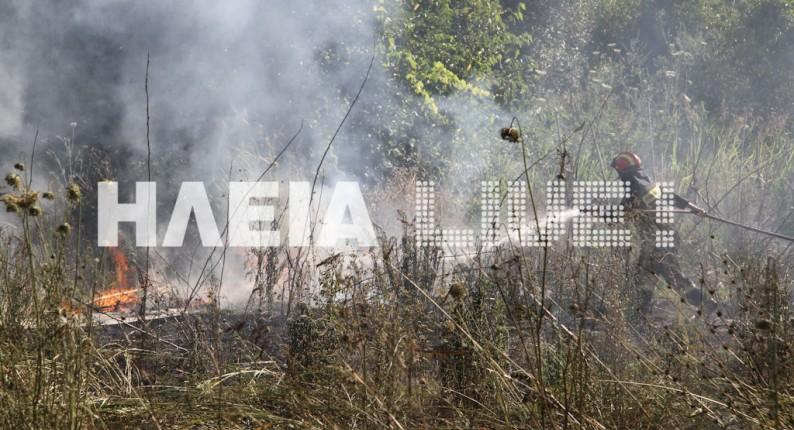 Ηλεία: Χειμερινή πυρκαγιά στη Νεράιδα σε δασική έκταση