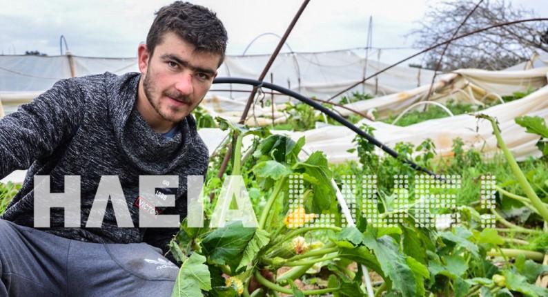 Ηλεία: Πλήγμα στα θερμοκήπια του Νεοχωρίου Κυλλήνης